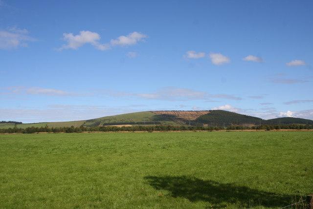 Riveston Grassland