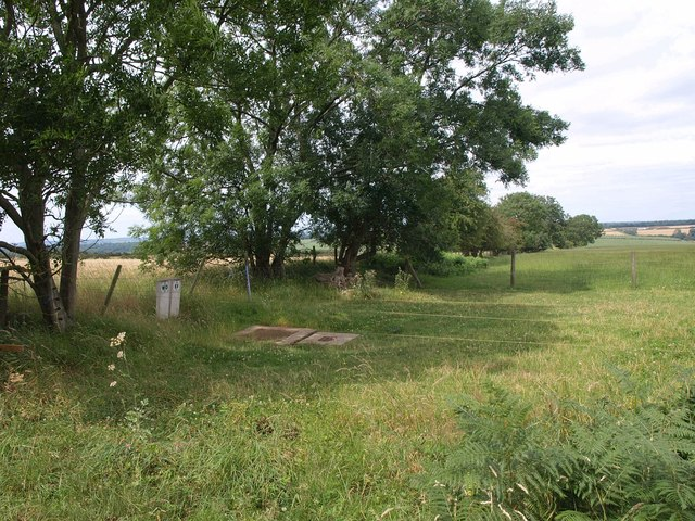 Field boundary near Biggin Farm