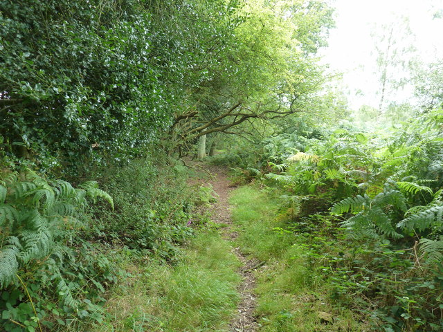 Footpath 3329 on the edge of Pound Common access land