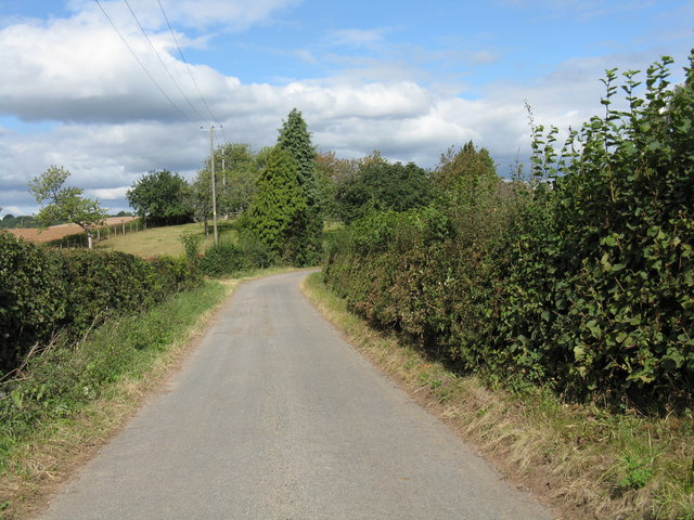 Lane north from Palmer's Farm