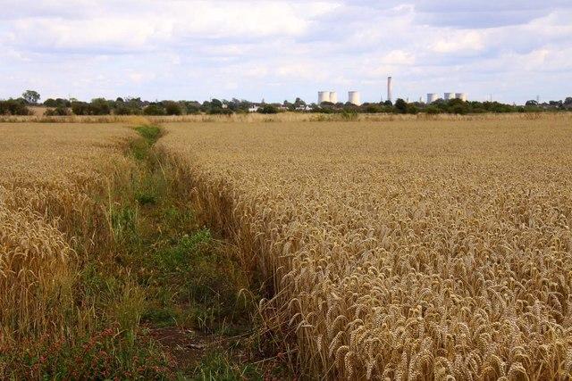 Bridleway to Drayton
