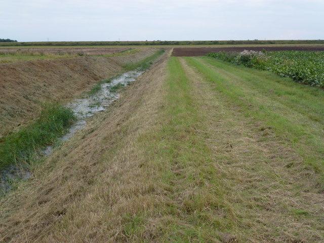 A recently mown drain near Green Drove Farm