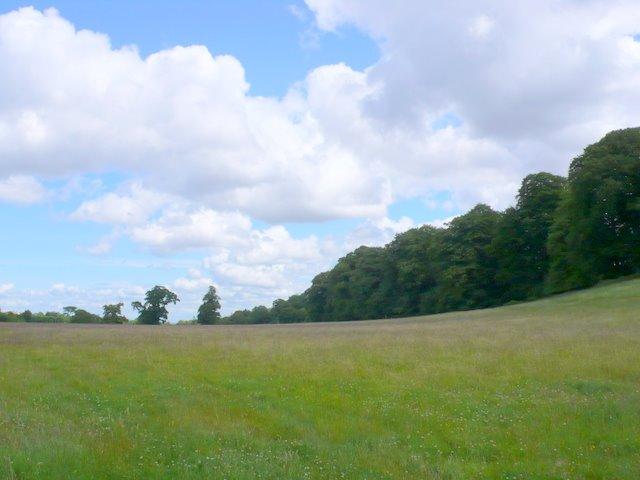 Fields near Abbots Leigh