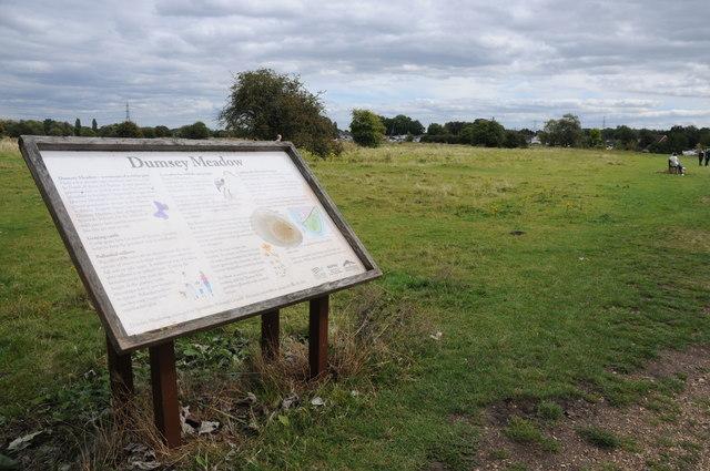 Dumsey Meadow