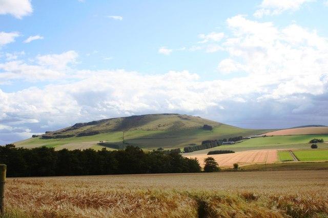 Braestairie Barley Field