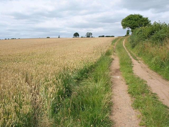 Elmete Lane