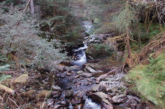 Burn from Gleann Riabhach, Achray Forest