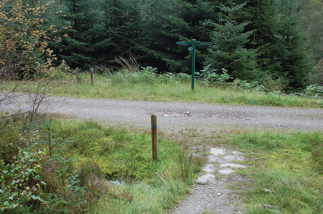 Path junction for Ben Venue, Achray Forest