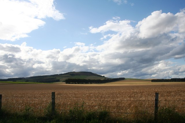 Tillymorgan Farmland