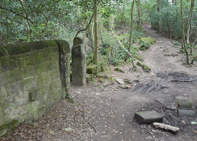 Wall in Braim Wood