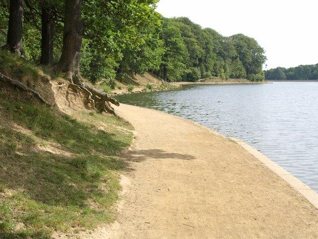 Path by Waterloo Lake