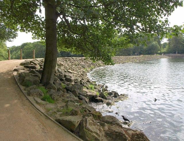 Dam, Waterloo Lake