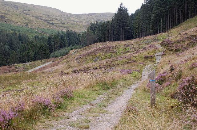 Path to Ben Venue, Gleann Riabhach