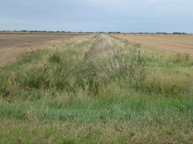 Dike and farmland, Wryde Croft/Inkerson Fen