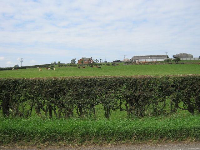 Viewley Hill Farm