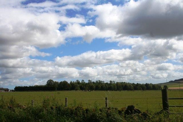 Blair Pasture