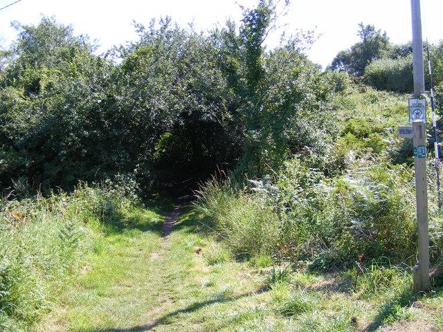 Bridleway off Palmers Lane