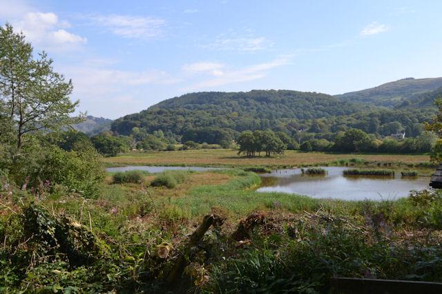 Lake at Ynys Hir from visitor centre