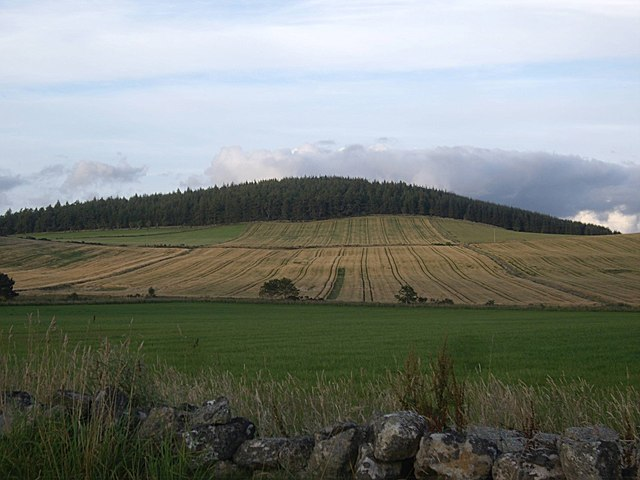 View over Stony Burn