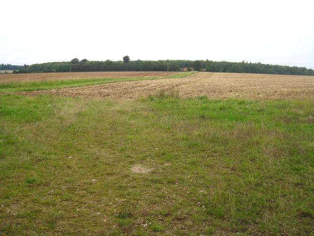 View to Bull's Bushes Farm