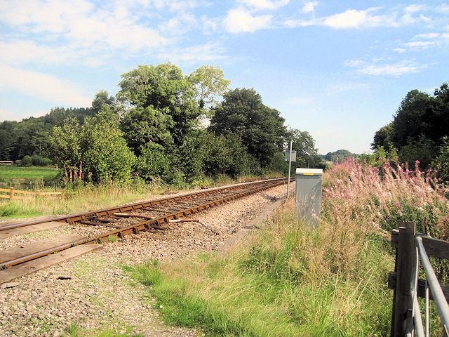 Rails to Machynlleth