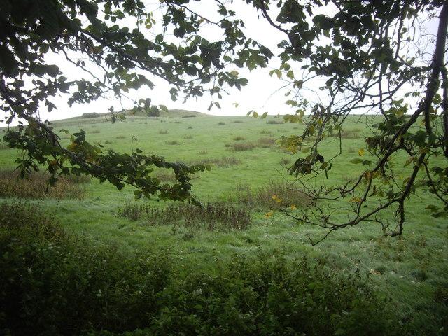 Maiden Hillock