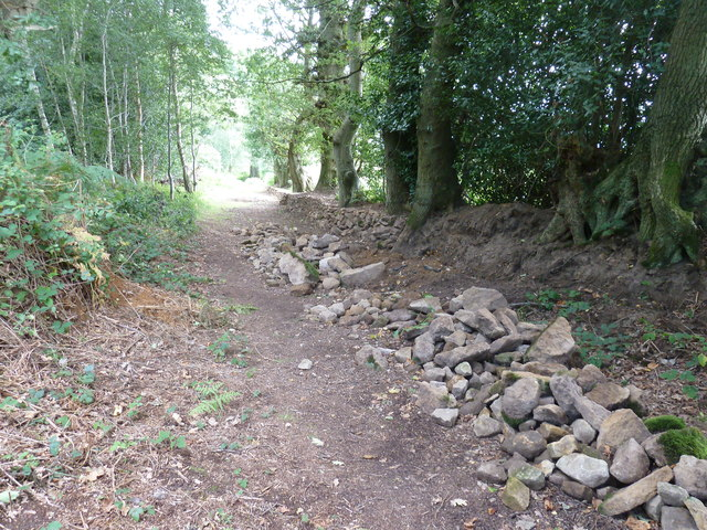 Dry stone retaining wall under repair on the edge of Pond Common