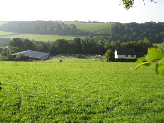 Pitt Farm
