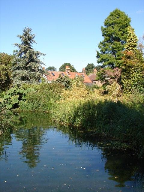 Water Gardens from the footbridge