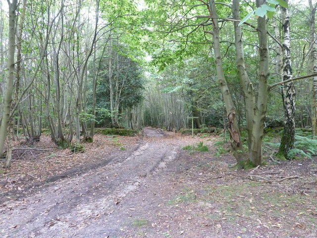 Footpath cross roads near King Edward VII hospital