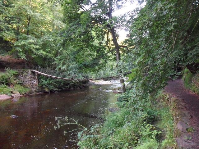Allen Banks: Suspension Bridge over the River Allen