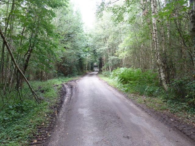 Scotland Lane through Little Common