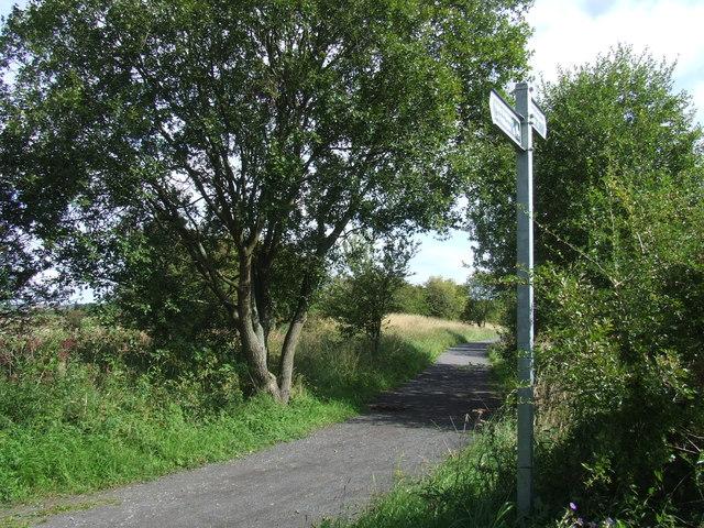 Railway path near High Moorsley