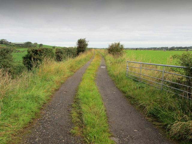 Track leading off Hillam Lane