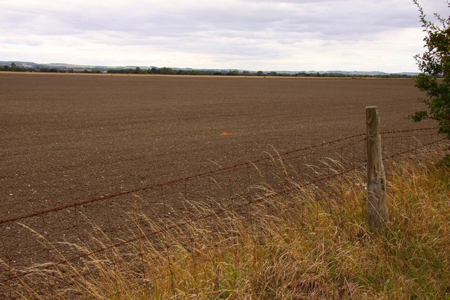 Field by the bridleway