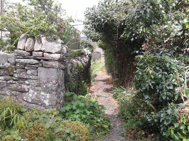 Alley on James Street, Llangynidr