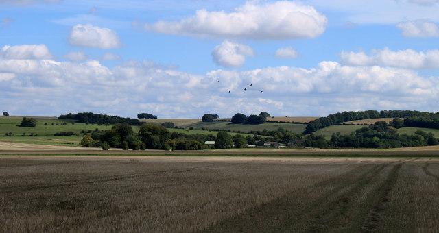 2011 : Cropped field near North Farm