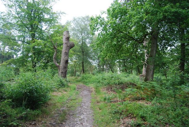 Footpath, Ridden Corner