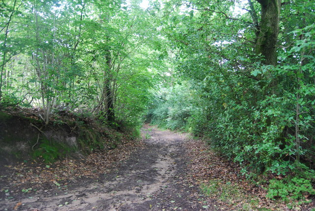 Serpent Trail