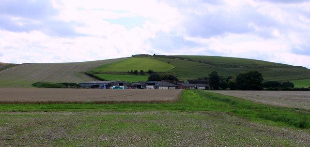 2011 : Fields belonging to North Farm