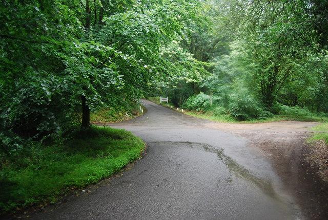 Sharp bend, Tennyson's Lane