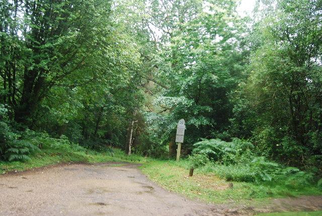 Entry to Black Down, Tennyson's Lane