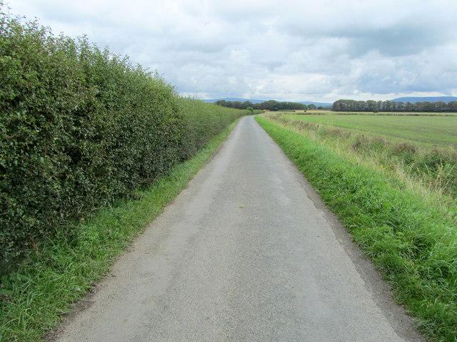 Gulf Lane