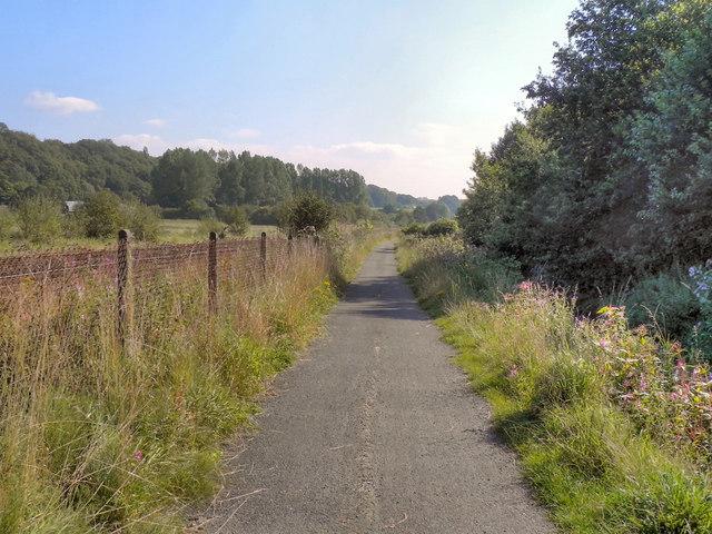 Path Alongside Middle Brook