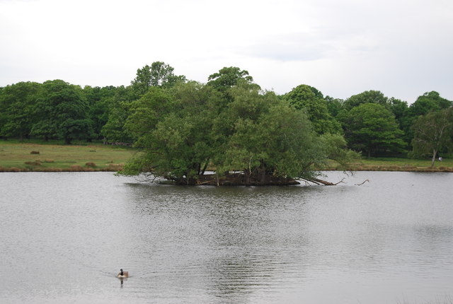 Island in Pen Ponds