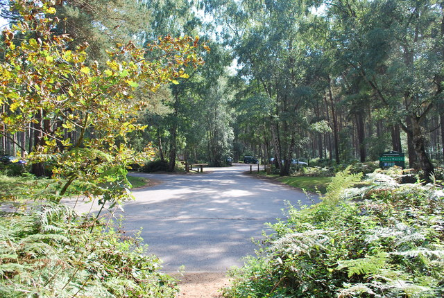 Car Park Rowney Warren Woods