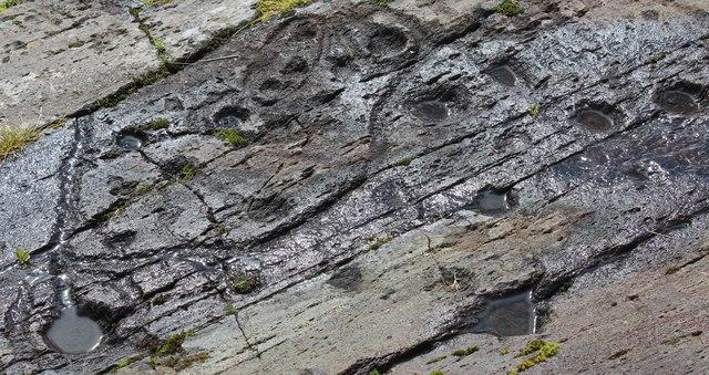 Kilmichael Glassary rock detail