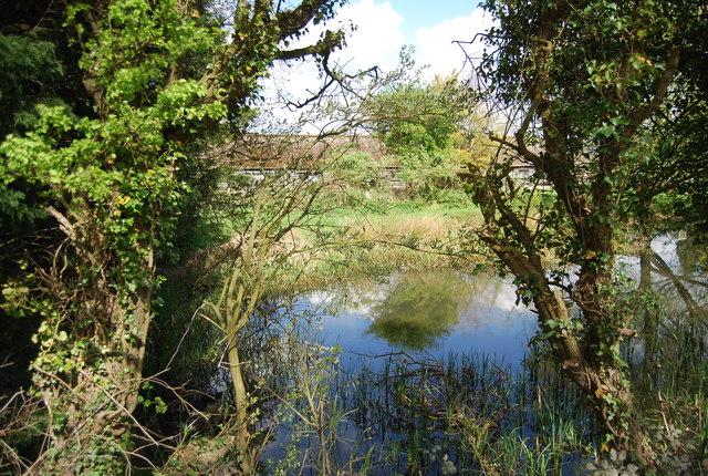 Pond, Snaylham Farm