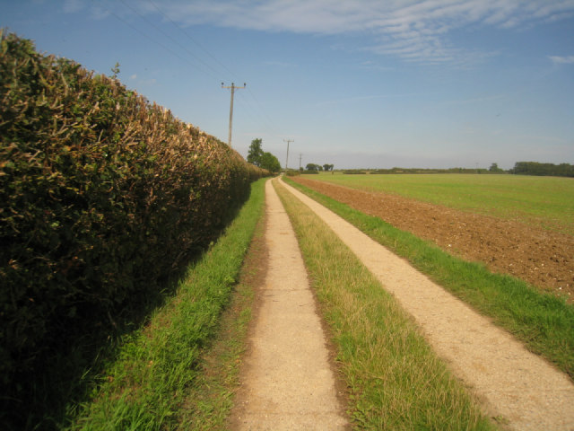 Access to Worting Wood Farm