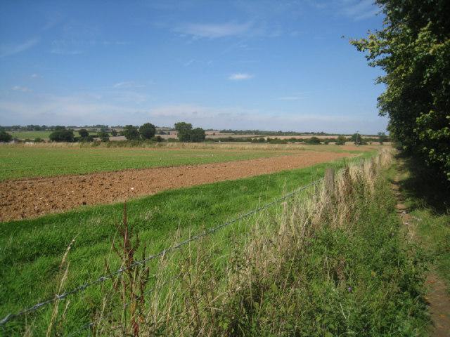 Footpath by Worting Wood